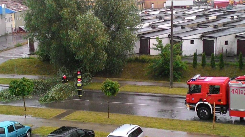 Powalone drzewo na ul. Jagiełły w Giżycku. Foto: M. Chochowska